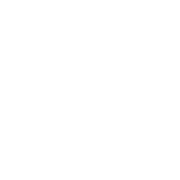 vector-lenses.png