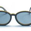 Bril Polarized - Modern model